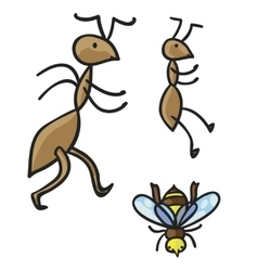 Ants and bee vector