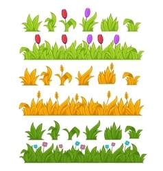 Green grass yellow wheat vector