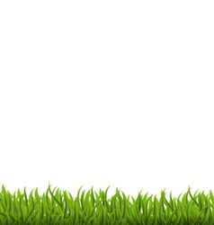 Spring background with green grass space for your vector image vector image