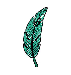 Tropical leaf summer icon vector