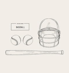 a collection of baseball elements vector image vector image