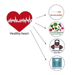 Healthy heart Proper nutrition Vegetables and vector image vector image