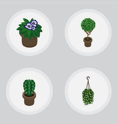Isometric houseplant set of peyote flowerpot vector