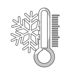 snowflake and thermometer icon vector image
