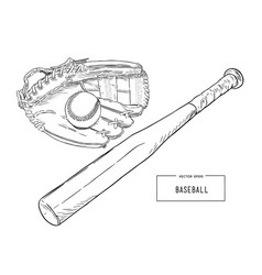 a collection of baseball elements vector image