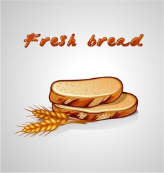 Slice of bread and rye grain vector