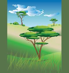 African savanna landscape vector
