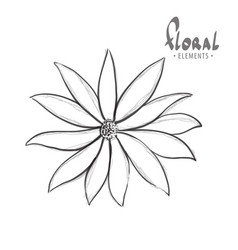 classic flower on a white background vector image vector image