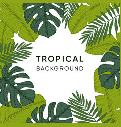 frame made of hand drawn tropical palm banana and vector image