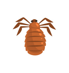 Louse insect parasite cartoon vector