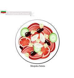 shopska salata a popular dish of bulgaria vector image vector image