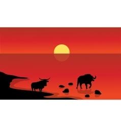 Silhouette of bull in lake vector