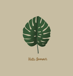 tropical palm monstera leaf hello summer vector image vector image