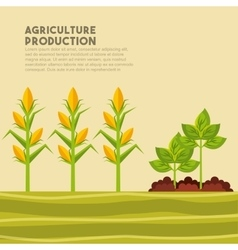 Agriculture production design vector