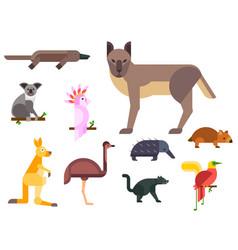 australia wild animals cartoon popular nature vector image