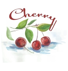 Watercolor cherry fruit label with the inscription vector