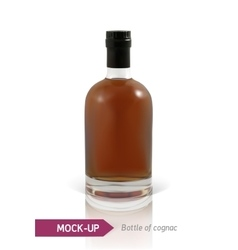 Bottles of cognac vector