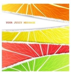 Four citrus background vector