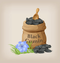 Nigella sativa black cumin in small sack vector