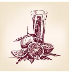orange juice vintage vector image vector image