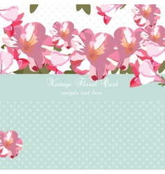 Pink flowers bouquet card vector image