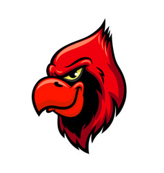 cardinal red bird head icon vector image