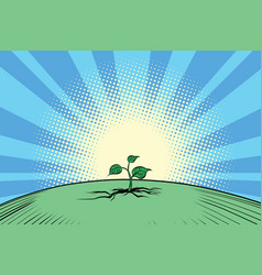 Ecology nature green sprout vector