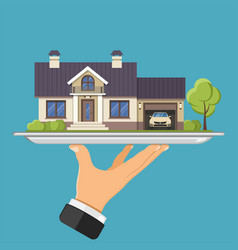 new home on tray vector image