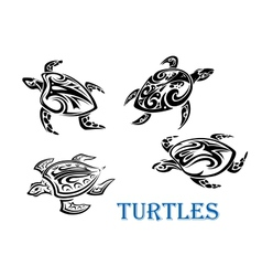 Swimming turtles set vector
