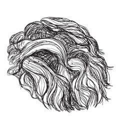 Hand drawn curly hair vector image vector image