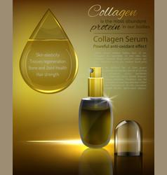 premium advertising design vector image vector image