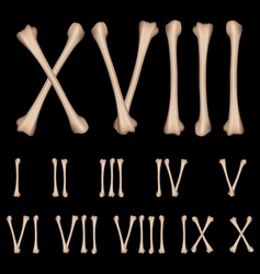 Roman numerals from the bones vector image