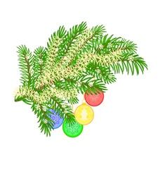 Christmas decoration christmas branch vector