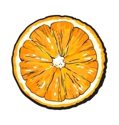 Colorful hand drawn round slice of unpeeled orange vector image vector image