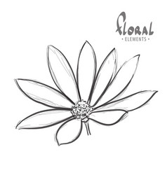 Flower on a white background vector