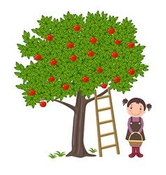 Girl picking apples vector image