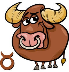Taurus or the bull zodiac sign vector