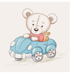Cute funny bear drive a car vector