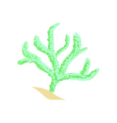 Green finger leather coral aquarium invertebrate vector