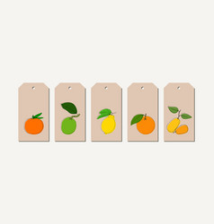 Tag set with vintage hand drawn citrus vector