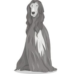 Afghan hound dog cartoon vector