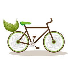 bicycle with leafs ecology vector image