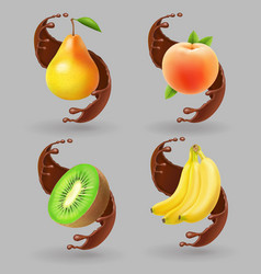 fruit and chocolate splash realistic vector image vector image