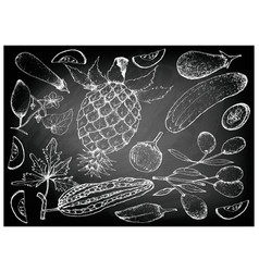 Hand drawn of gourd and squash fruits vector