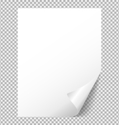 Sheet of white paper with a bent corner vector image vector image