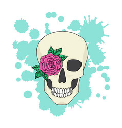 skull with flower on the background of colorful vector image