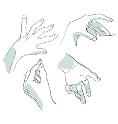 set of sketches of hands in different positions vector image