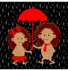 A couple of funny hedgehogs under red umbrella vector