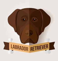 Chocolate labrador vector