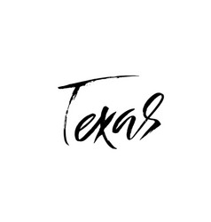texas modern dry brush lettering retro vector image